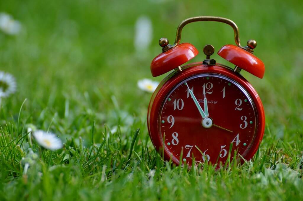 A red clock in the grass
